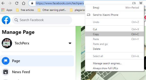 copy the URL of your FB page